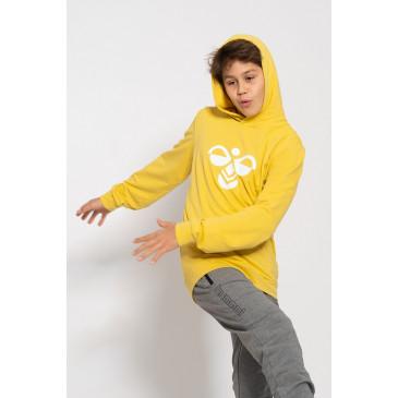 otroški pulover s kapuco hummel KESS HOODIE NOOS
